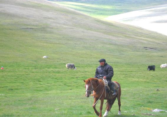 чабанская стоянка перед горой Монгун-Тайга